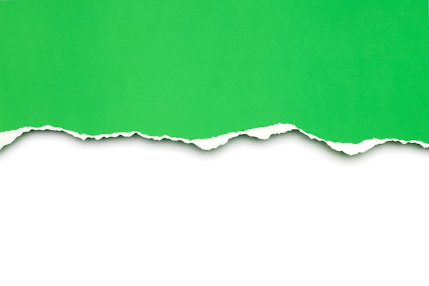 Carta strappata verde isolata su fondo bianco.