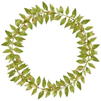 Corona di foglie di palma tropicale verde.