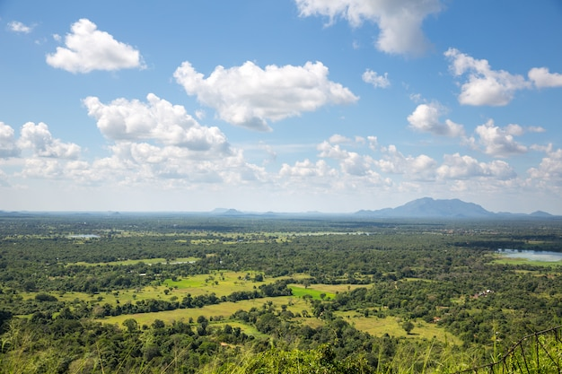 Valle verde e cielo blu, scenario di ceylon