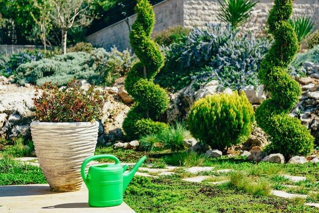 Annaffiatoio verde per fiori in giardino
