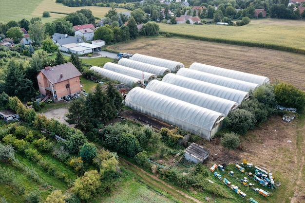Serre allineate in fila, ricoperte da una pellicola trasparente di ortaggi e frutta coltivati, vista dall'alto. agricoltura, prodotti biologici. drone