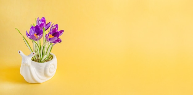 Biglietto di auguri banner, composizione con lumaca e fiori primaverili su sfondo giallo con copia spazio
