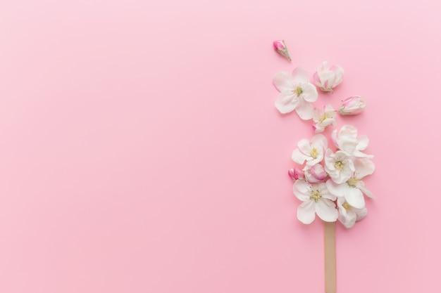Il concetto di biglietto di auguri piatto giaceva su sfondo rosa con lecca lecca di gelato al fiore di mela su un bastone. foto di alta qualità