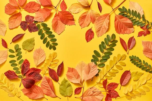 Biglietto di auguri da foglie colorate