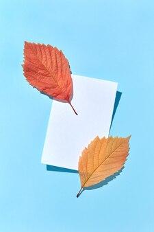 Biglietto di auguri dal foglio di carta bianco e due foglie colorate autunnali