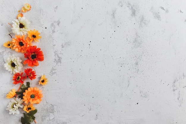 Sfondo piatto in cemento grigio con capolini colorati autunnali