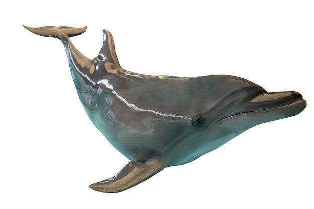 Delfino grigio isolato su sfondo bianco.