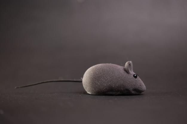 Topo giocattolo grigio per gatto su grigio