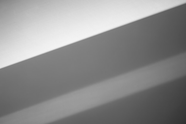 Fondo grigio delle ombre della parete. luce solare con ombre sulla parete vuota pulita all'interno della stanza. foto di alta qualità