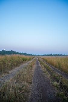 Strada di terra nella nebbia all'alba estiva