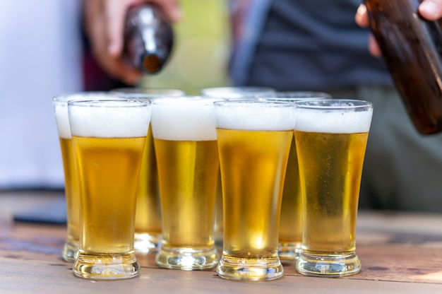 Gruppo di amici felici che vivono uno stile di vita sano e rilassarsi tifando con birra e bevendo birra