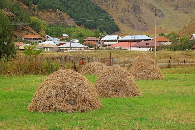 Gruppo di mucchi di fieno nel campo delle colline pedemontane del caucaso