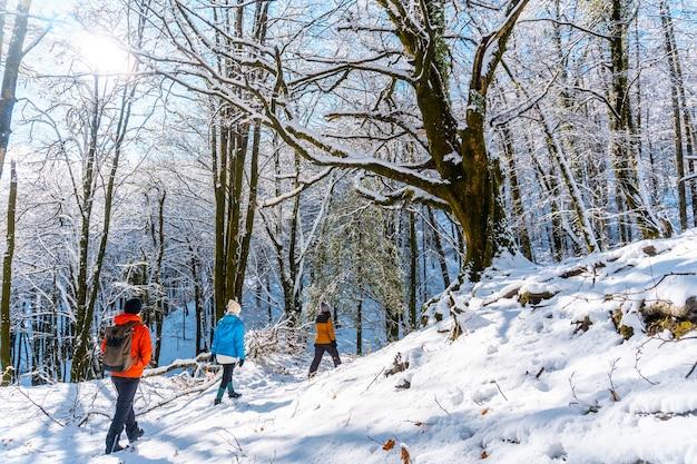 Un gruppo di escursionisti sul sentiero nel parco naturale nevado de artikutza a oiartzun