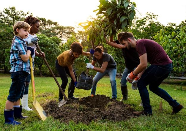 Il gruppo di persone pianta insieme un albero all'aperto