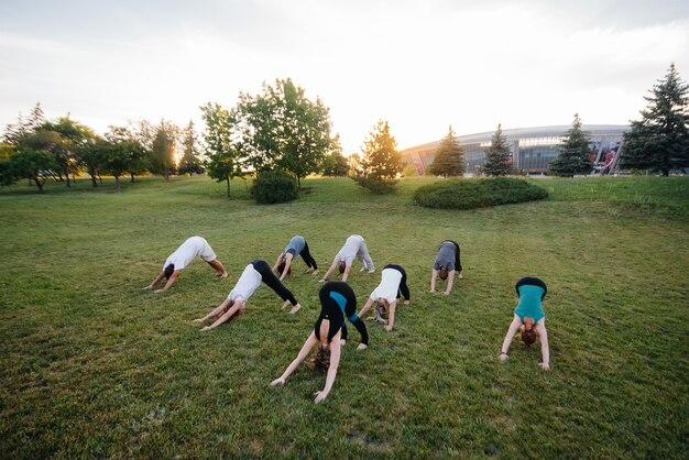 Un gruppo di persone fa yoga nel parco al tramonto.