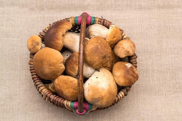 Gruppo di funghi porcini su lino. il colore e la consistenza naturali. funghi nel cestino.