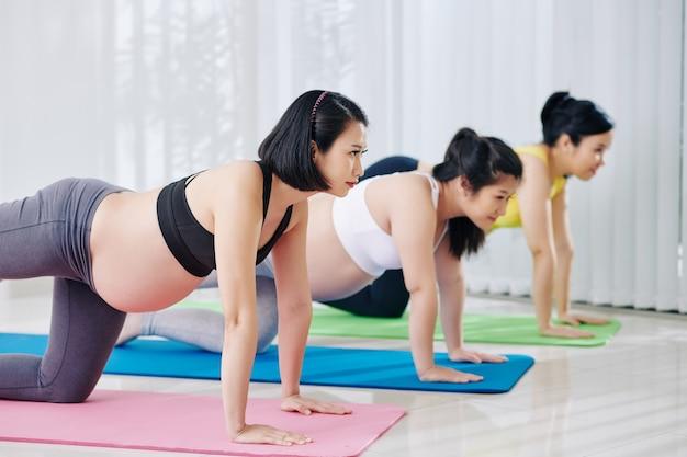 Il gruppo di donne vietnamite incinte di misura seria che fa il sollevamento della gamba posteriore inginocchiato nel randello di salute