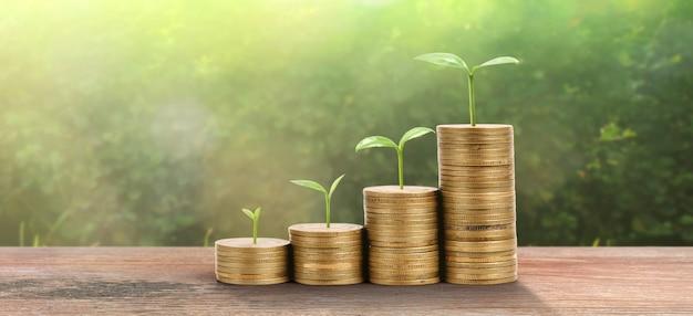 Pianta in crescita sulle monete. concep di investimento finanziario