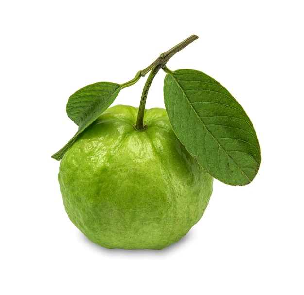 Guava isolato su bianco