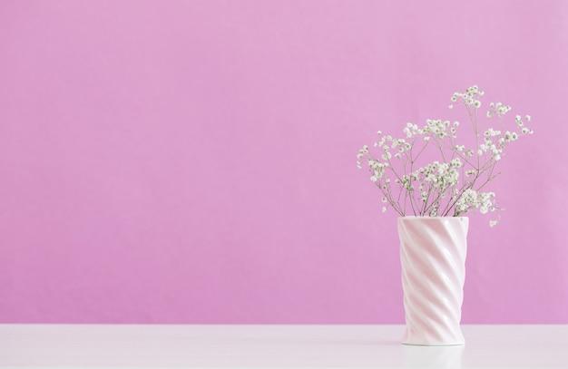Fiori di gypsophila in vaso sul rosa