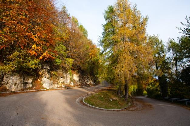 Tornante con paesaggio autunnale, strada asfaltata. alberi colorati