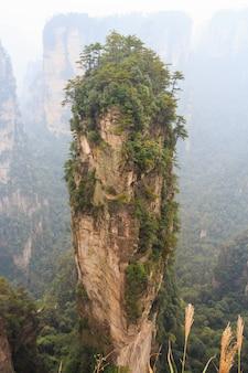 Montagna di halleluja nel parco nazionale di zhangjiajie e nebbia, cina
