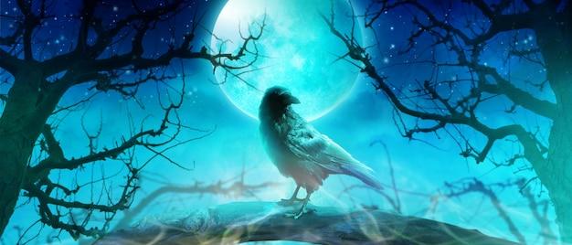 Sfondo di halloween con corvo in una notte spettrale.