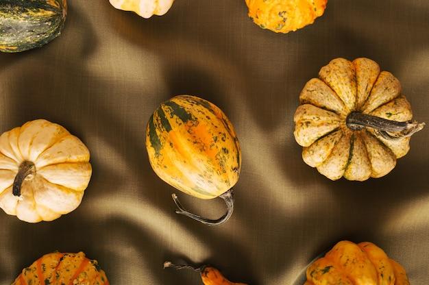 Sfondo di halloweendiversi tipi di zucche disposti spontaneamente su un elegante materiale marrone