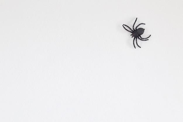 Ragno nero di halloween sul muro