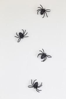 Ragni neri di halloween sul muro