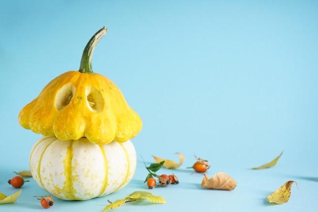Zucche fresche di halloween e foglie secche su sfondo blu. spazio per il testo.