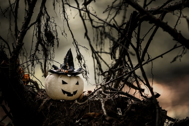 Decorazione di zucca di halloween