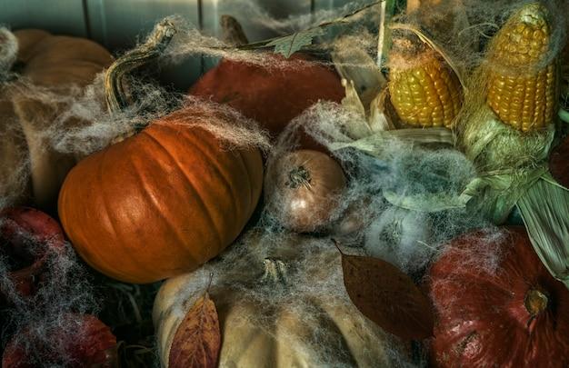 Testa di zucca di halloween jack-o-lantern su fondo in legno