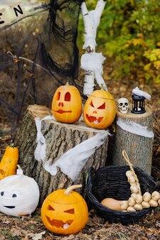 Zucca di halloween con decorazione nella foresta.