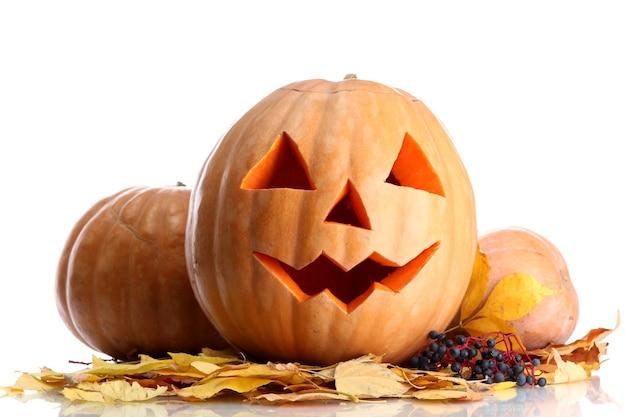 Zucche di halloween e foglie di autunno, d su bianco