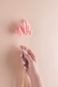Mano su uno sfondo beige con fiori secchi. concetto di stazione termale.
