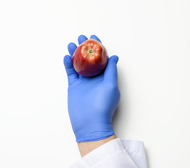 La mano in un guanto di lattice blu tiene una mela rossa matura su uno sfondo bianco, concetto di cibo sano, vista dall'alto