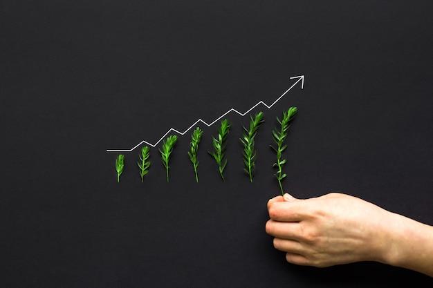 Mano della donna d'affari mettendo piante in crescita con grafico di aumento
