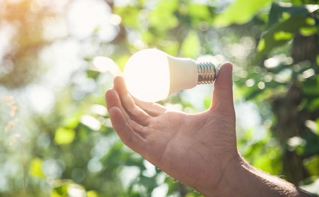 Mano che tiene la lampadina in natura. energia verde