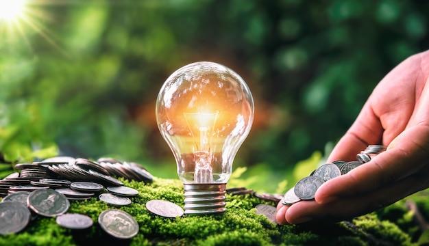 Mano che tiene le monete dei soldi con la lampadina su erba verde e sole in natura. concetto di risparmio di denaro ed energia