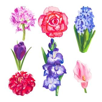 Elementi floreali in acrilico o tempera dipinti a mano impostati su bianco