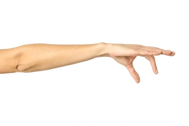 Raccogliere, tenere, afferrare o raggiungere a mano. gesturing della mano della donna isolato su bianco