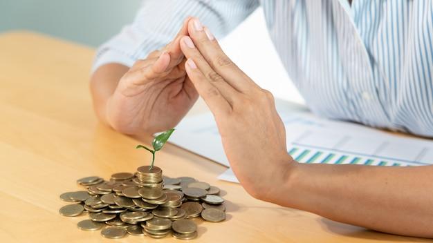 La copertura protettiva per le mani protegge un giovane albero che cresce su pile di monete per risparmiare sugli investimenti rischiosi