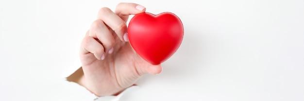 Mano che estrae il cuore rosso del giocattolo dalla carta strappata