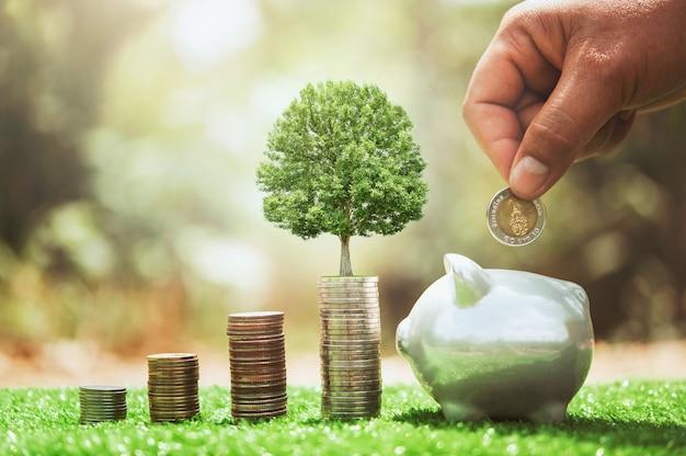 Mano che mette le monete nel salvadanaio con la pila di soldi e la crescita delle piante. concetto di finanza e contabilità