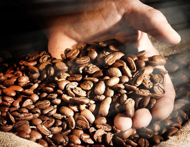La mano prende una manciata di chicchi di caffè dal sacchetto di iuta.