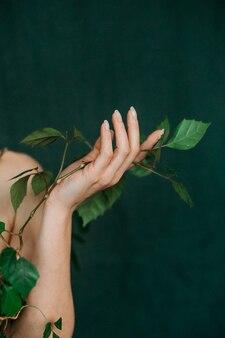 Mano vene gioventù concetto di vita pianta rampicante flora verde Foto Premium