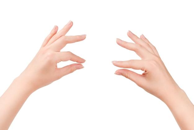 La mano della donna tiene qualcosa di isolato su priorità bassa bianca.