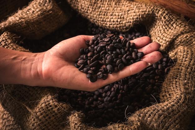 Manciata di chicchi di caffè crudo in mano su sfondo scuro