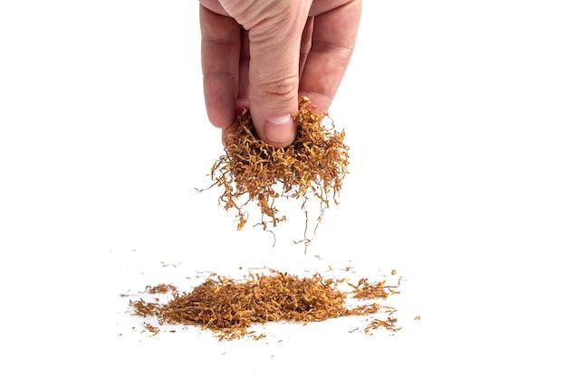Manciata di tabacco in una mano maschile. isolato